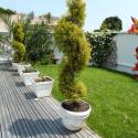 Superb 5 room apartment with roof garden