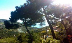 Charmant 2 Pi�ces R�nov� - Vue vall�e & mer