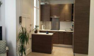 One bedroom flat in Nice