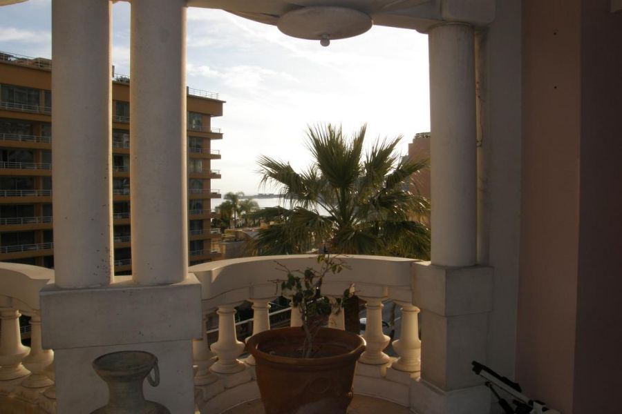 Master apartment in the Florestan
