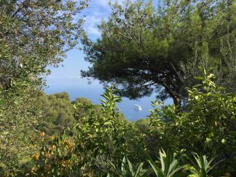 Properties for Sale - Villa jumelée dans un domaine privé - Monaco Monte-Carlo
