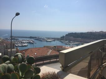 Properties for Sale - Harbour Light Palace - 3P - Monaco Monte-Carlo