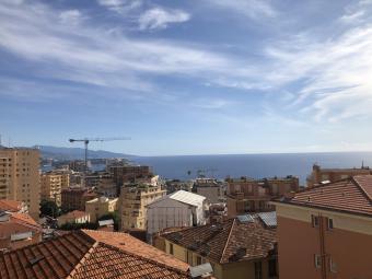Ventes - 4 pièces - Jardin Exotique - Monaco Monte-Carlo