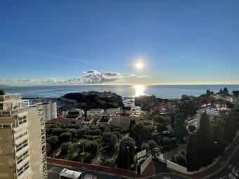 Ventes - Grand 2 pièces - Garden House - Monaco Monte-Carlo