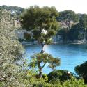 For sale Apartment France RARE: Very nice apartment/villa with 4 rooms in the heart of St Jean Cap Ferrat - Agence de la Gare