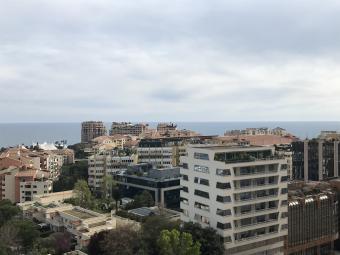 Properties for Sale Monaco Apartment - 2/3 Pièces Rue Plati, Loi 1291 - Monaco Monte-Carlo