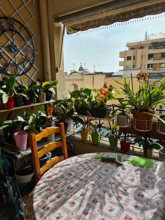 Monaco Villas - Sunny family apartment next to Monaco - Monaco Monte-Carlo