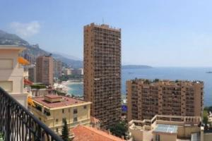 Monaco Villas - Penthouse in center of Monaco - Monaco Monte-Carlo