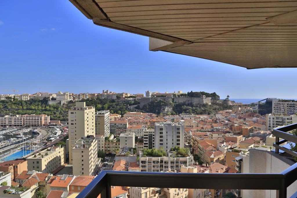 Monaco Villas - UNIQUE MULTIFACETED OPPORTUNITY IN MONACO!! - Monaco Monte-Carlo