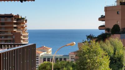 Rey & Nouvion Immobilier - 2 pièces Parc St Roman - Monaco Monte-Carlo