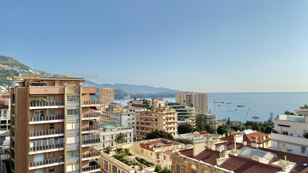 Blu Immobilier - CENTRAL STUDIO NEW SEA VIEW MIXTE USE PARKING - Monaco Monte-Carlo
