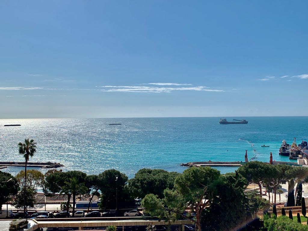 Blu Immobilier - CASABIANCA LARVOTTO 3 ROOMS MIXTE NEW SEA VIEW PARKING - Monaco Monte-Carlo