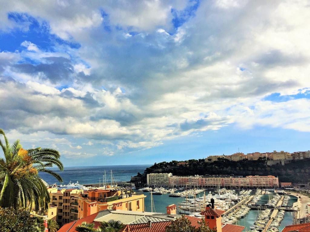 Blu Immobilier - 2P BOULEVARD DE SUISSE SURPLOMBANT LE PORT HERCULE - Monaco Monte-Carlo
