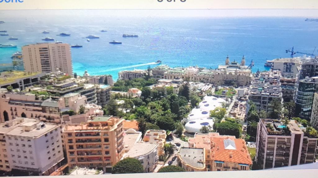 Blu Immobilier - TRES GRAND STUDIO DANS UN IMMEUBLE TRES CENTRAL DISPOSANT D 'UNE TRES BELLE VUE MER. - Monaco Monte-Carlo