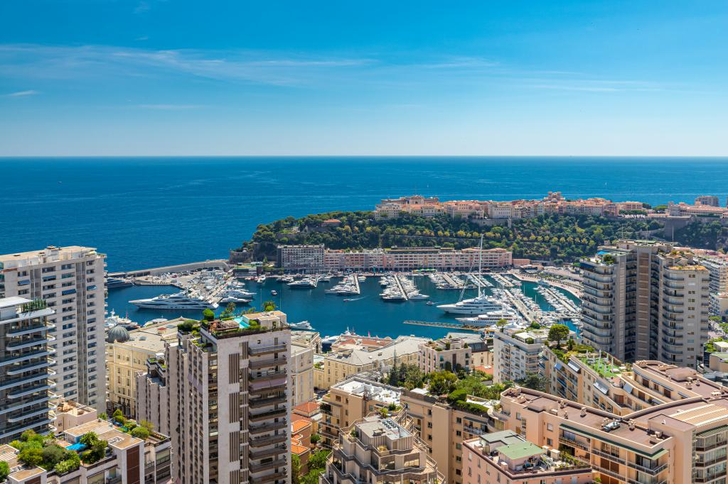 Blu Immobilier - MILLEFIORI FABULOUS 2 ROOMS APARTMENT WITH PANORAMIC VIEW - Monaco Monte-Carlo