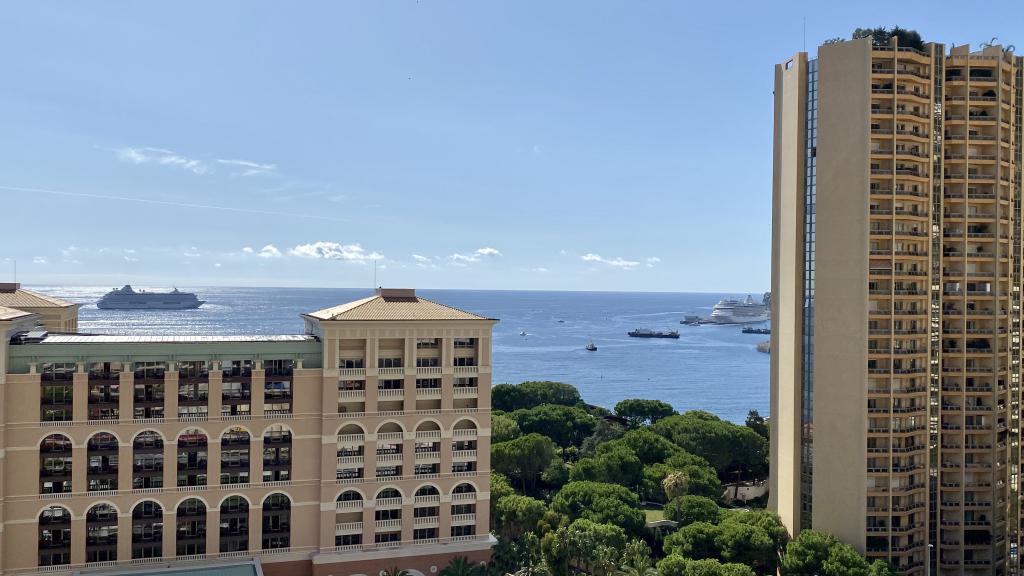 Blu Immobilier - MONTE CARLO SUN 3 PIÈCES USAGE MIXTE CAVE PARKING - Monaco Monte-Carlo