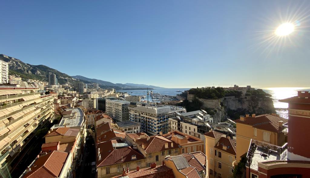 Blu Immobilier - RUE PLATI 2 PIÈCES A RÉNOVER AVEC VUE SOUS LOI - Monaco Monte-Carlo