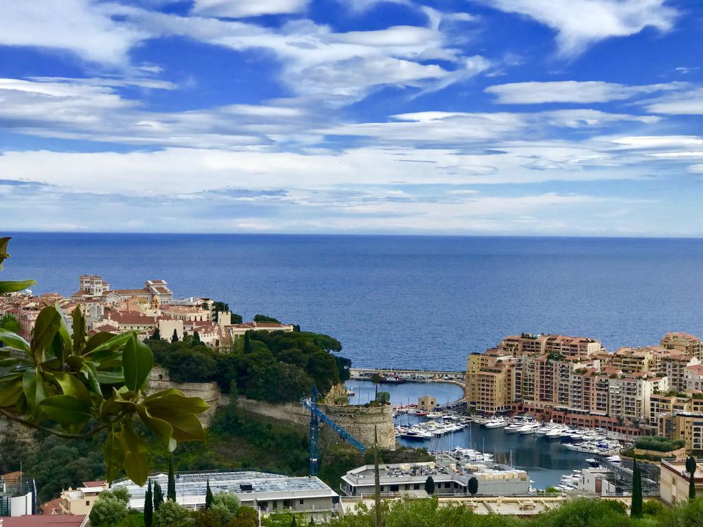 Monaco Villas - VILLA DINA - HOTEL PARTICULIER - LOCATION - Monaco Monte-Carlo
