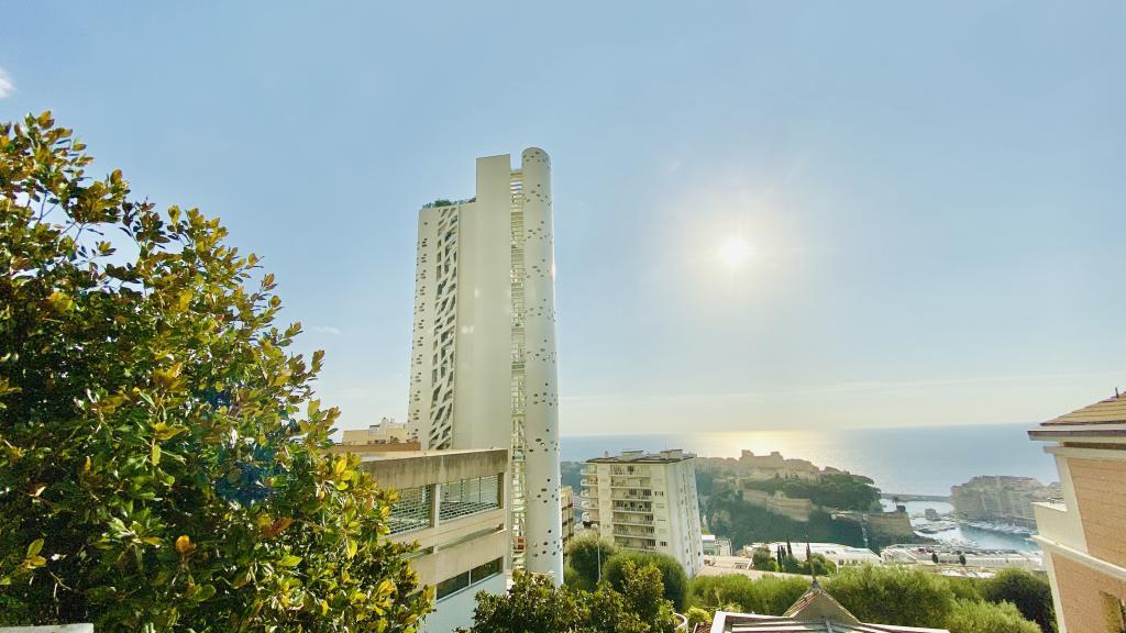 Monaco Villas - VILLA DINA - PETITE MAISON DE VILLE - Monaco Monte-Carlo