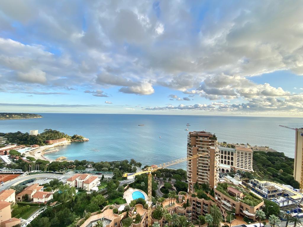 Blu Immobilier - PARC SAINT ROMAN VUE PANORAMIQUE - Monaco Monte-Carlo