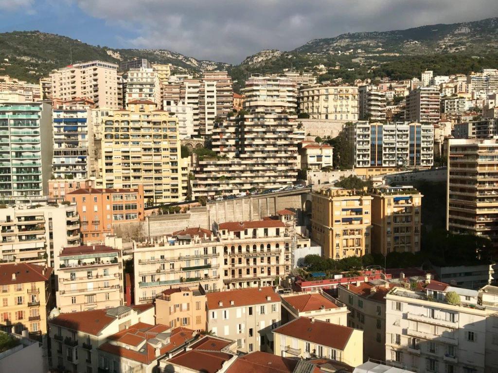 Blu Immobilier - UN PETIT BIJOU - STUDIO DÉCORÉ PAR ARCHITECTE - Monaco Monte-Carlo